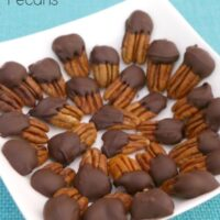 Low Carb Chocolate Dipped Pecans