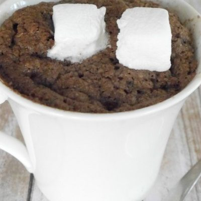 Low Carb Hot Chocolate Mug Cake