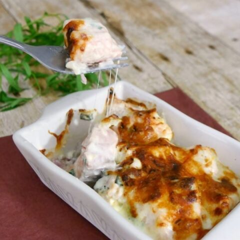 Low Carb Salmon Gratin