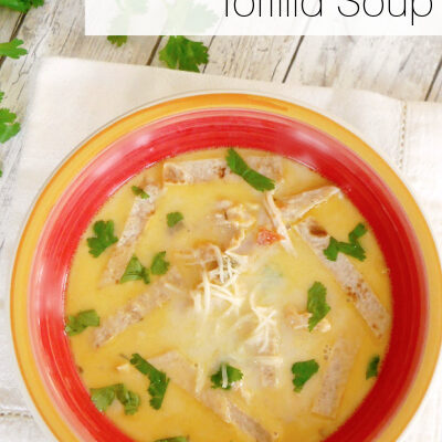 Low Carb Chicken Tortilla Soup
