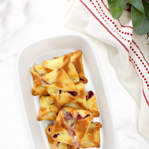 Low Carb Brie and Cranberry Bombs