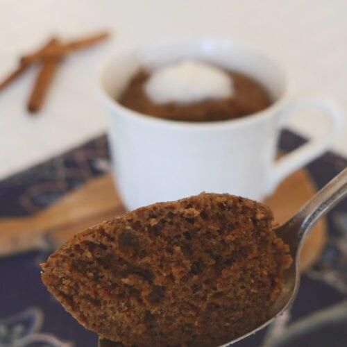 Low Carb Cinnamon Chocolate Mug Cake