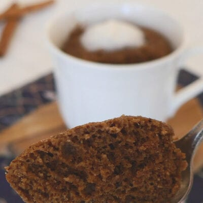 Low Carb Cinnamon Chocolate Mug Cake