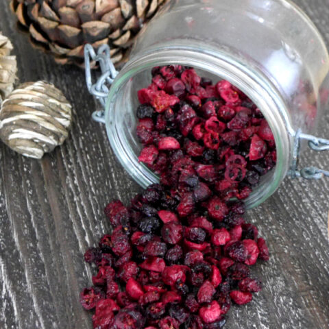 Low Carb Dried Cranberries