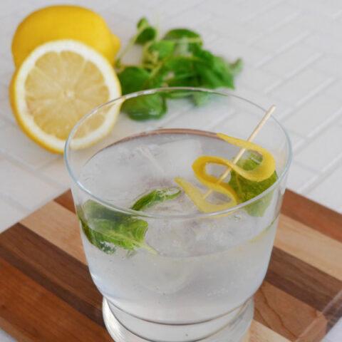 Keto Gin & Tonic with Lemon and Basil