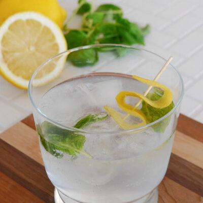 Keto Gin and Tonic with Lemon and Basil