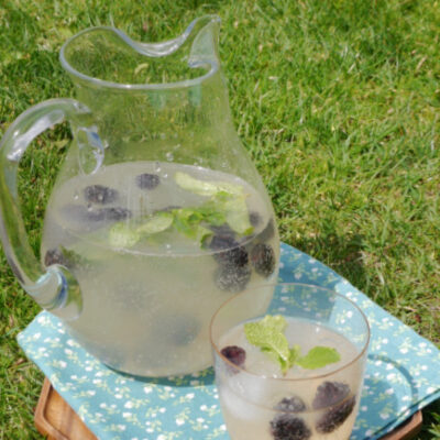 Low Carb Punch with Prosecco